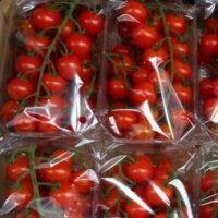 томат черри упаковка