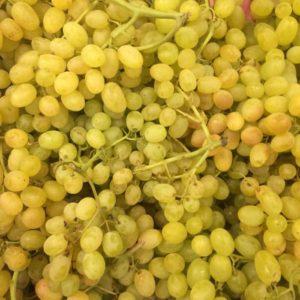 виноград турция